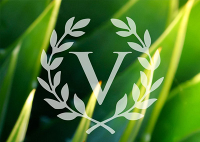 veritas wealth